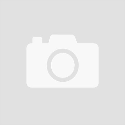 Felco Replacement Nut & Bolt Set for Model 2